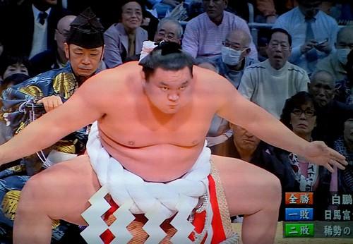Sumo Season
