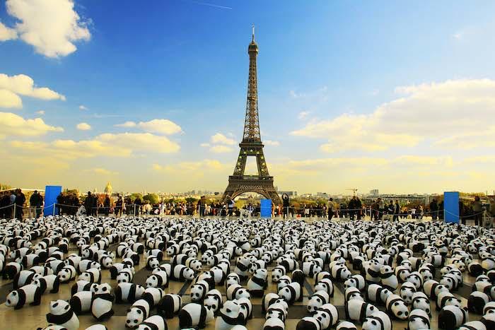 c-franck-charel-1600-pandas-tour-eiffel