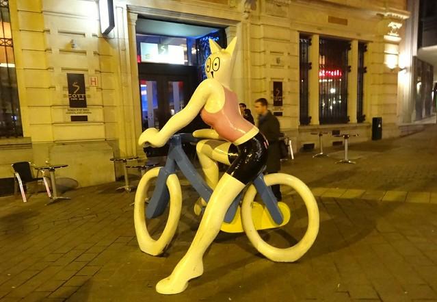 cat on a bike in Brussels