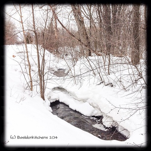 30/3/2014 - fast {even though there is still lots of snow, our little stream is running fast!} A sure sign of spring!  #fmsphotoaday #fast #stream #creek #spring #snow #winter #princeedwardcounty #millerroad