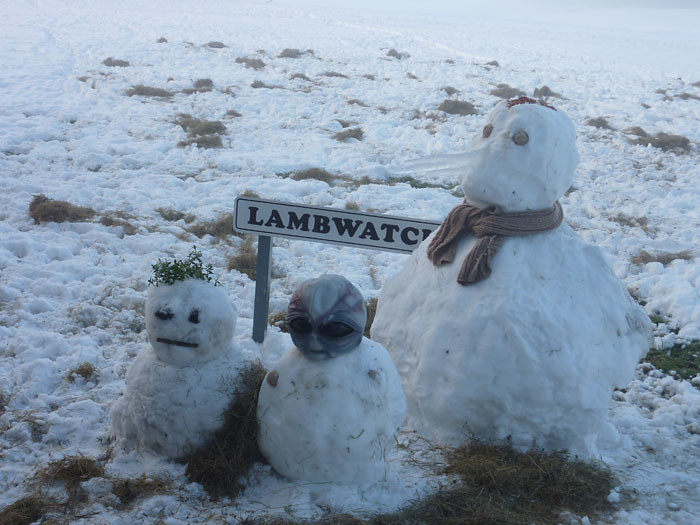 LambWatch HQ