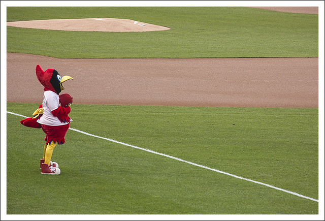 Fredbird The Patriot