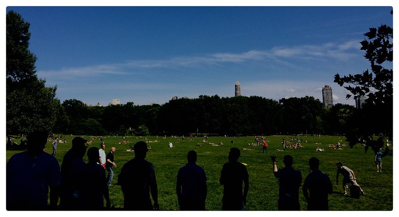 Postcard From Central Park,NYC.