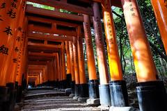 Fushimi Inari Taisha XXVIII