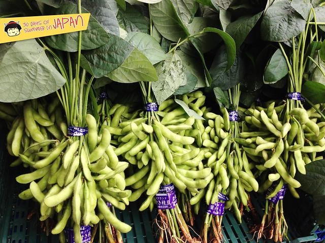 fresh edamame on steam - edamame plant