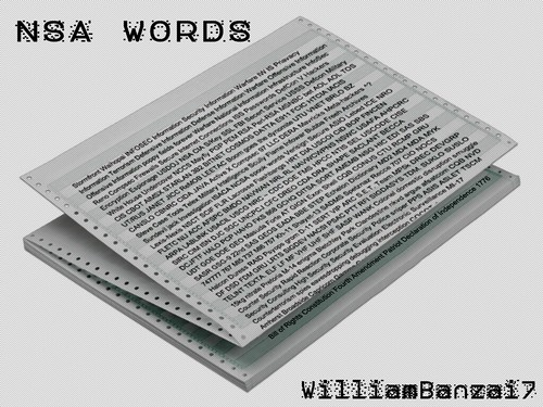 NSA WORDS by WilliamBanzai7/Colonel Flick