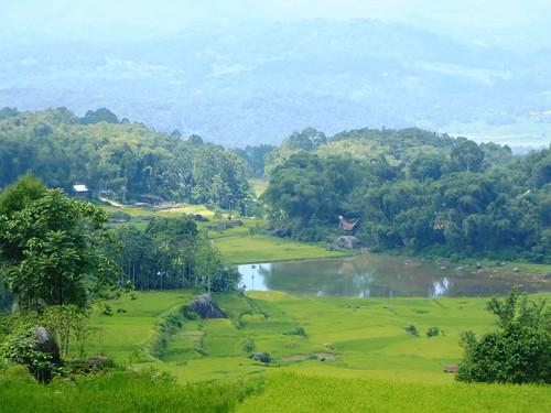 Sulawesi13-Lo'ko Mata-Ke'pa (33)