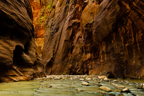 Deep in the Narrows (Zion National Park, UT)