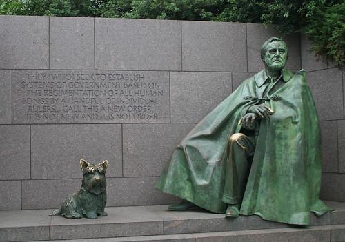 Roosevelt Hund allein