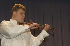bowed string instrument, violinist, classical music, string instrument, musician, violin, viola, music, violist, string instrument,