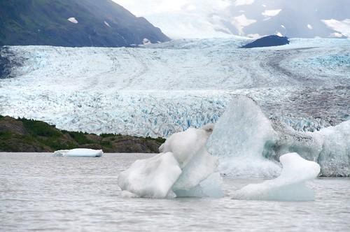 lake cold ice alaska glacier homer iceberg kenai kachemak avventurenelmondo