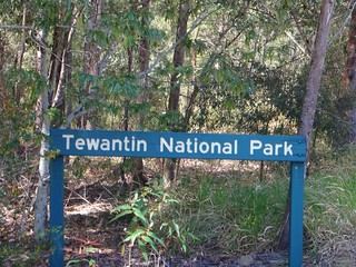 Tewantin State Forest
