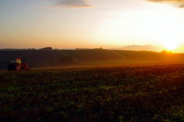 Sunrise, sunrise1