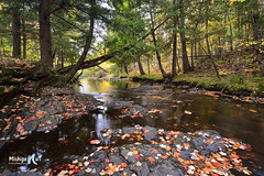 """Leaves on the Stream"" Slate River by Michigan Nut"