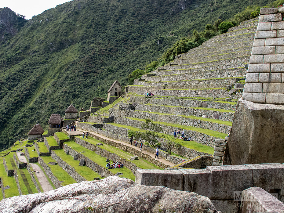 Some of Machu Picchu's many terraces.