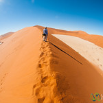 Namib Desert, Big Daddy Dune - Namib-Naukluft Park, Namibia