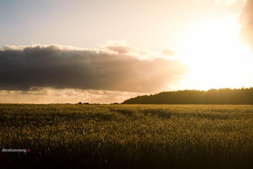 sunset denmark syddanmark randbøl