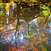 momiji '13 - autumn leaves #7 (Hounen-in temple, Kyoto) by Marser