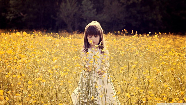 Cute Child in Flower Field Wallpaper