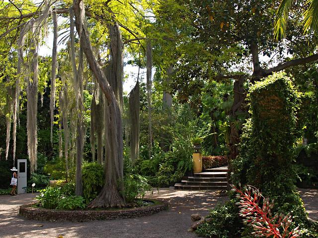 The botanical gardens in tenerife a tropical paradise - Botanical garden puerto de la cruz ...