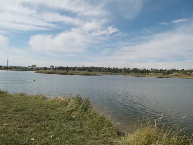 muskrat spring lake park