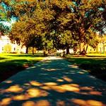 another beautiful day on the Academic Quad! #onlyattulane #onlyinneworleans #tulane #nola