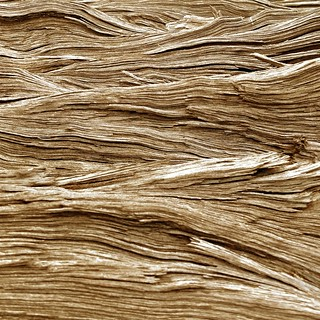 Waves of wood