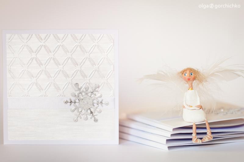 konvert-dla-diska-novogodnij-fotoprojekt-7