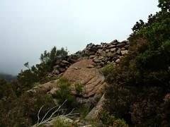 Le sentier de Sud Balardia : des soutènements magnifiques du sentier