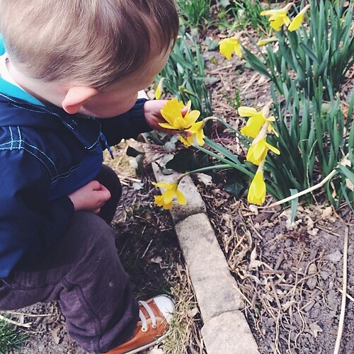 Teaching him how to stop and smell the flowers. #hellospring #dailyjohn