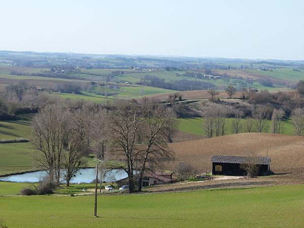 paysage brignemont