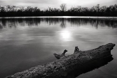 sunset lake water log texas shore sanangelo lakenasworthy