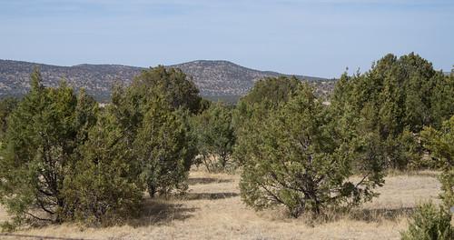 county mountains texas observatory davis mcdonald jeffdavis