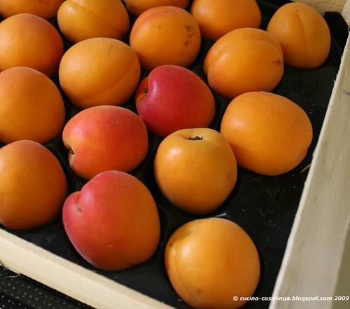 Aprikosen gelegt klein copyr