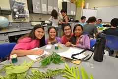 Summer STEM Camp