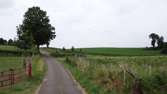 Limburg, landschap