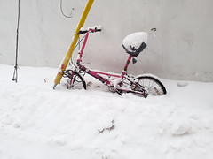 Pink Bike Buried in Snow