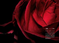 wallpaper July 2013
