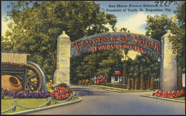 San Marco Avenue Entrance To The Fountain Of Youth St