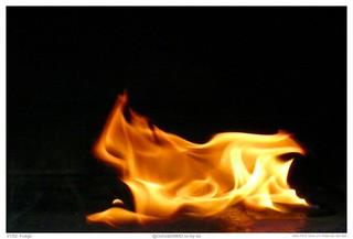 31/52: Fuego