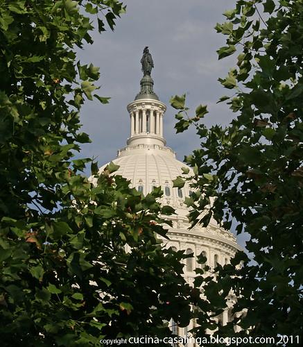 Capitol Spitze