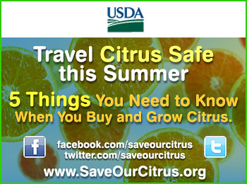 Travel Citrus Safe this Summer, 5 Things You Need to Know When You Buy and Grow Citrus button.