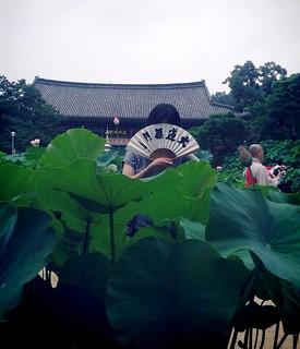 Temple peace