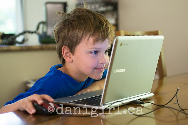 photo of a boy smiling at a laptop