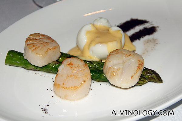 Pan Seared Scallops (S$28) - served with grilled asparagus, poached eggs and hollandaise sauce with mushroom soil and shaved parmesan
