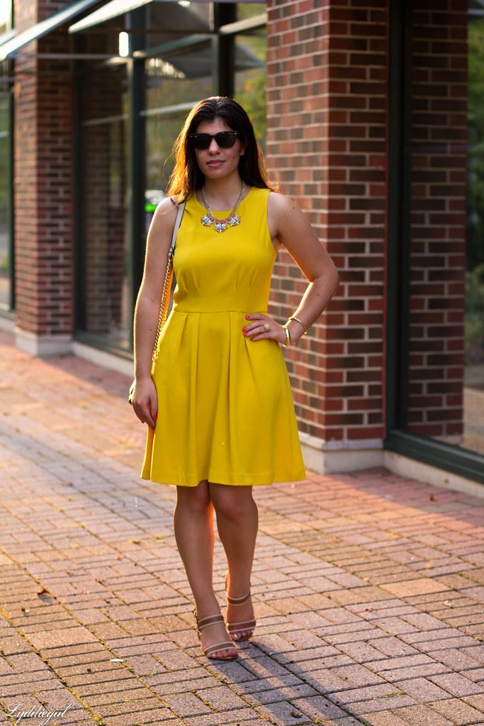 yellow dress-1.jpg