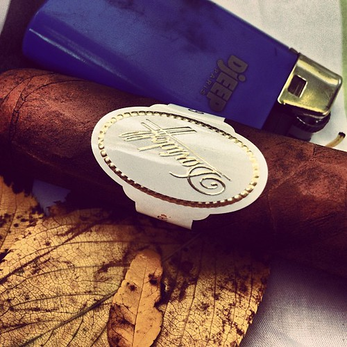 A Davidoff Special R while Gracie collects leaves in Omi's backyard.