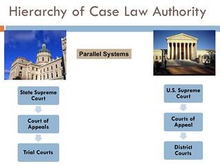 Parallel Court Systems