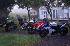 Misty morning - Photo of Airel