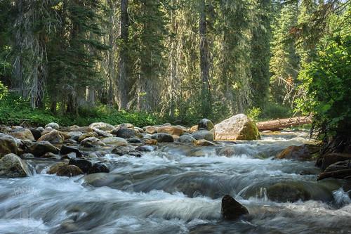 river idaho clearwaterriver littlenorthforkoftheclearwater